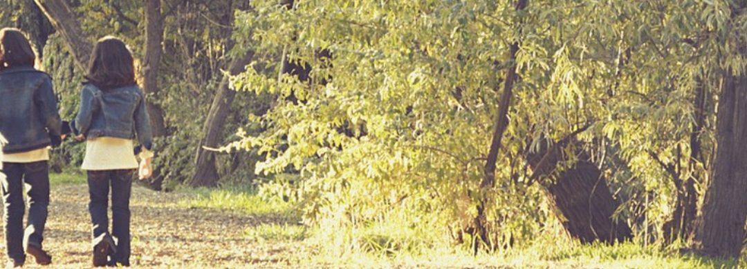 Freunde stromern durch den Wald